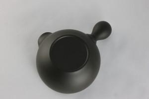 syoryu-07 (5)